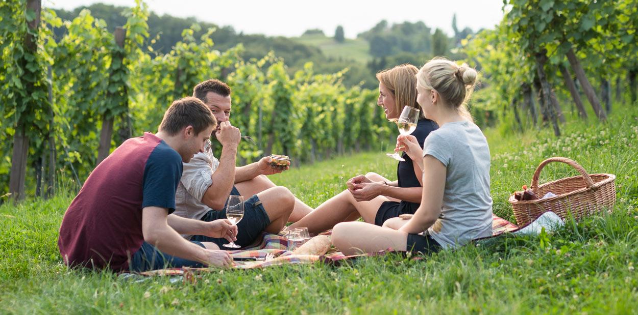 Gamlitz sperrt auf Picknick im Weingarten