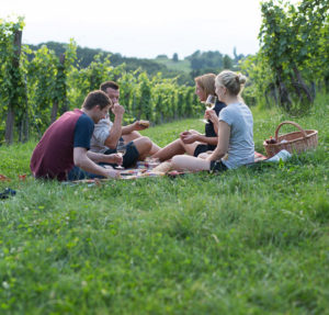 weinlandhof-picknick