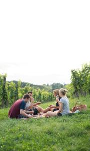 Picknick im Weingarten Rahmenprogramm Seminarveranstaltung