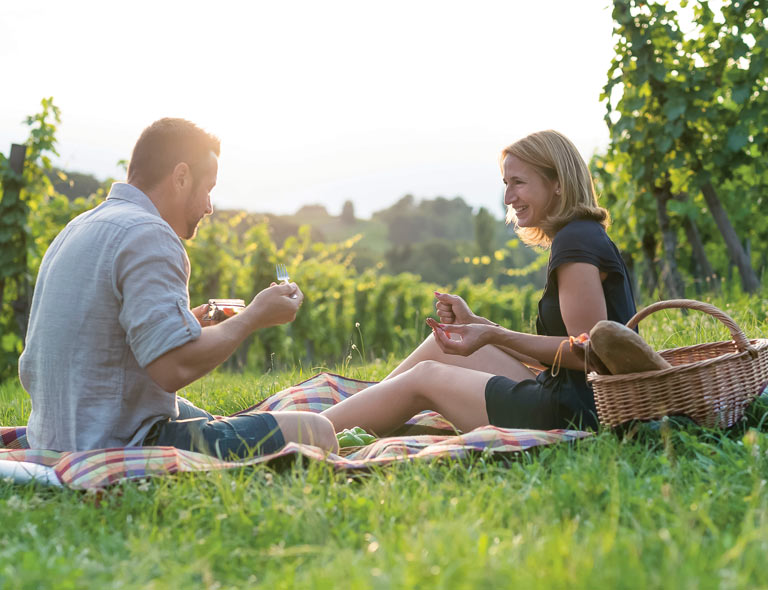 Picknick in den südsteirischen Weingärten