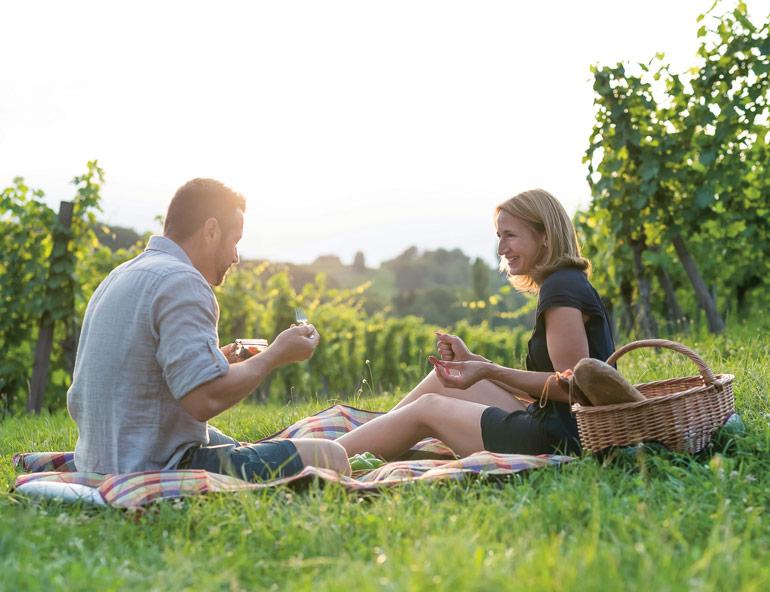 Pauschalangebot Wein & Natur