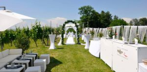 Hochzeit Weinstadt Holler