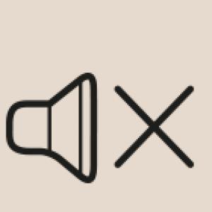 ruhelage-icon