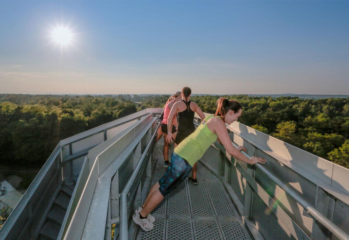 Sightseeing Tour Südsteiermark