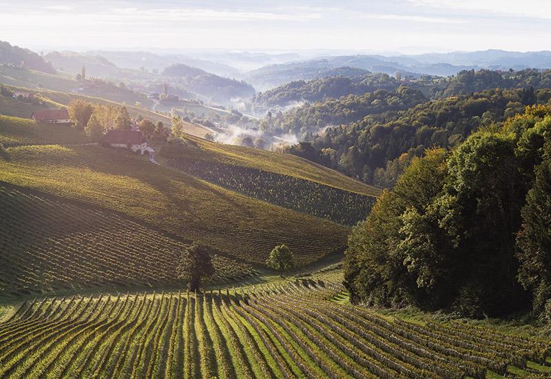 Weinstraßen Schnuppertage