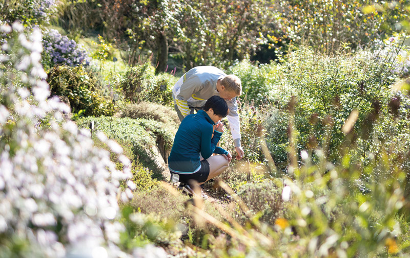 Naturgarten Amtmann