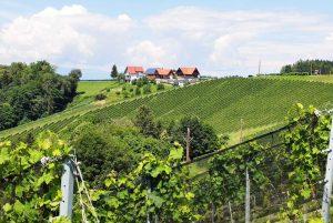 weinlandhof-rennrad-touren-pic-10