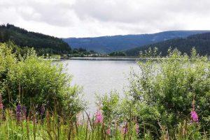 weinlandhof-rennrad-touren-pic-5