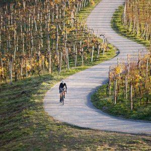 weinlandhof-rennrad-touren4