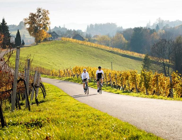 weinlandhof-paket-roadbike-wochenzuckerl